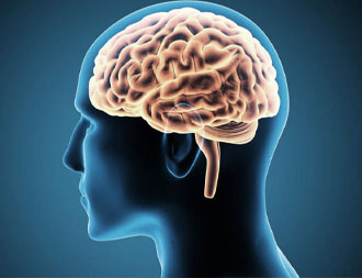 Inflamação no Cérebro